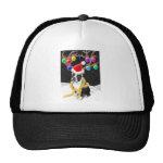 Boston Terrier Christmas Hat