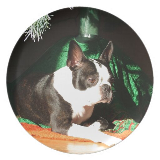 Boston Terrier Christmas with Piper Party Plate