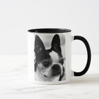 Boston Terrier Close Up Mug