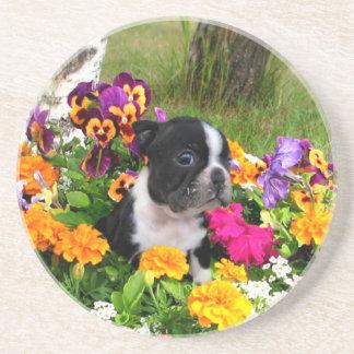 Boston Terrier Coaster