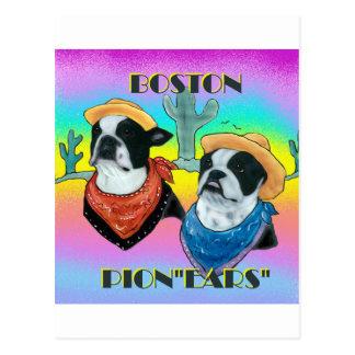 Boston Terrier Cowboy duo Postcard