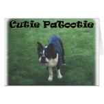 Boston Terrier:  Cutie Patootie Greeting Cards