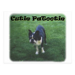 Boston Terrier:  Cutie Patootie Post Card