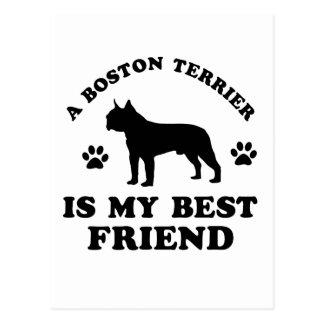 Boston Terrier designs Postcard