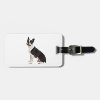 Boston Terrier dog beautiful photo custom gift Luggage Tag