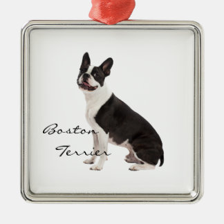Boston Terrier dog beautiful photo custom ornament