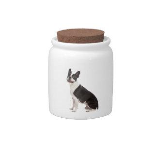 Boston Terrier dog beautiful photo, gift Candy Jars