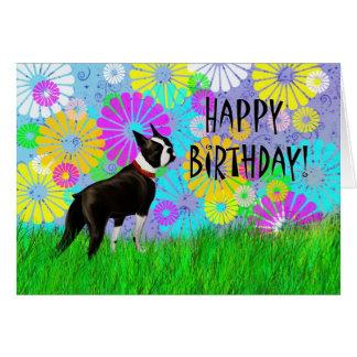 Boston Terrier Dog Birthday Greeting Card