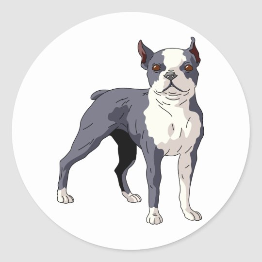 Boston Terrier Dog Classic Round Sticker