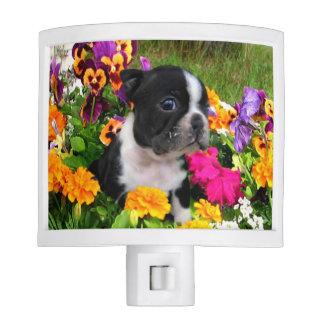 Boston Terrier dog Night Light