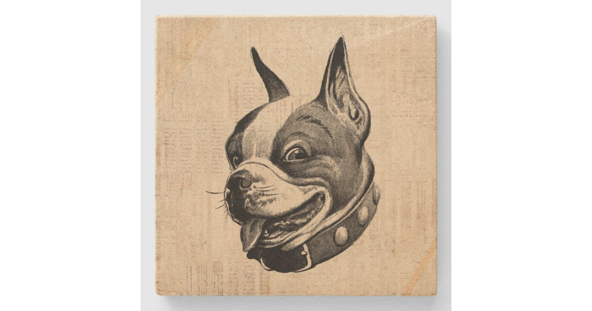 Boston Terrier Dog Cute Pet Dog Antique Art Stone Coaster Zazzle Com