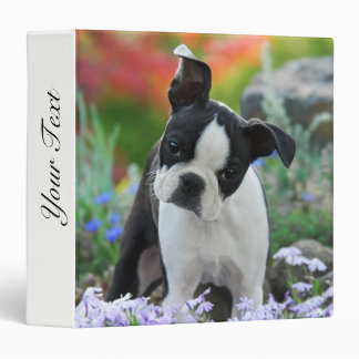 Boston Terrier Dog Cute Puppy Animal Head Photo __ Binder