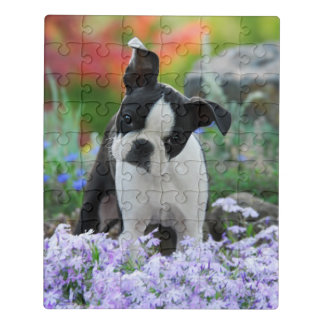 Boston Terrier Dog Cute Puppy Animal Head Photo ** Jigsaw Puzzle