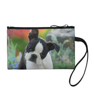 Boston Terrier Dog Cute Puppy, Clutsch Change Purse