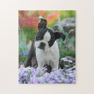 Boston Terrier Dog Cute Puppy Game 11x14 Puzzle
