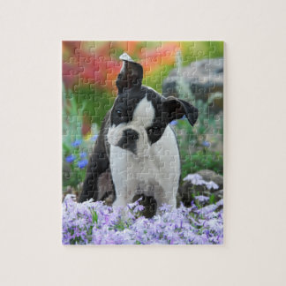 Boston Terrier Dog Cute Puppy Game 8x10 Puzzle