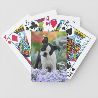 Boston Terrier Dog Cute Puppy, Game Bicycle Playing Cards