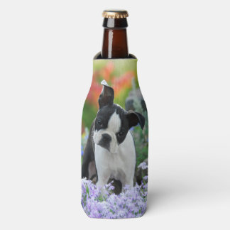 Boston Terrier Dog Cute Puppy Photo, Bottle-Jacket Bottle Cooler