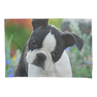 Boston Terrier Dog Cute Puppy Photo - Pillow-Cover Pillow Case