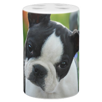 Boston Terrier Dog Cute Puppy Portrait Pet Photo Soap Dispenser And Toothbrush Holder