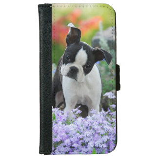 Boston Terrier Dog Cute Puppy, protective Wallet Phone Case For iPhone 6/6s