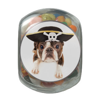 Boston Terrier Dog Dressed As A Pirate Jelly Belly Candy Jars