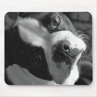 Boston Terrier Dog Mouse Pad