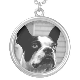 Boston Terrier Dog Necklace