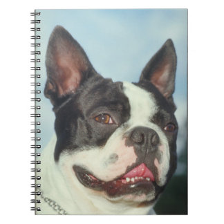 Boston Terrier Dog Notebook