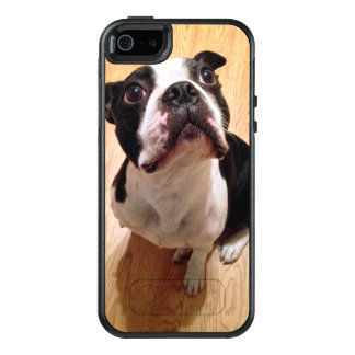Boston Terrier Dog OtterBox iPhone 5/5s/SE Case