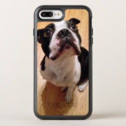 Boston Terrier Dog OtterBox Symmetry iPhone 8 Plus/7 Plus Case