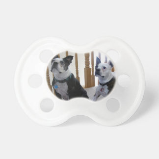Boston Terrier dog BooginHead Pacifier