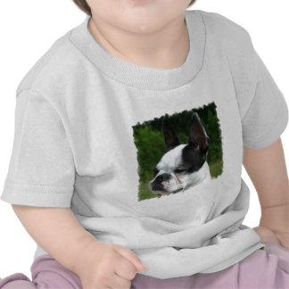 Boston Terrier Dog Photo Baby T-Shirt
