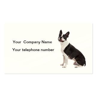 Boston Terrier dog photo custom business cards