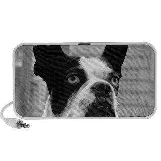 Boston Terrier Dog Portable Speakers