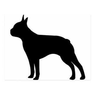 Boston Terrier Dog Postcard