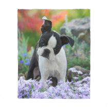 Boston Terrier Dog Puppy cozy Fleece Blanket