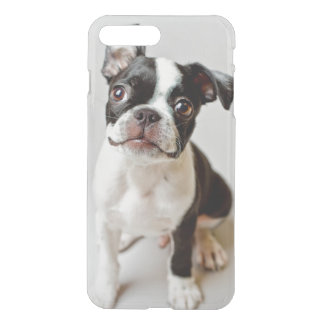 Boston Terrier dog puppy. iPhone 8 Plus/7 Plus Case