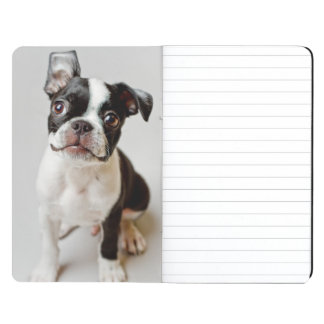 Boston Terrier dog puppy. Journal