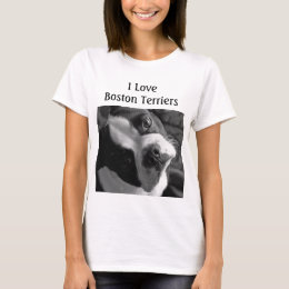 Boston Terrier T-Shirts
