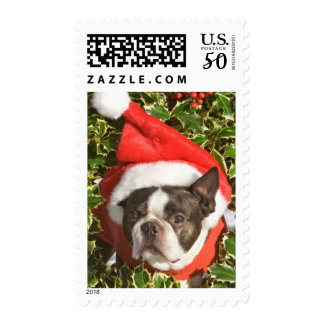 Boston Terrier dog wearing a Christmas wreath Postage