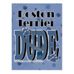 Boston Terrier DUDE Post Cards