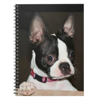 Boston Terrier face Spiral Notebook