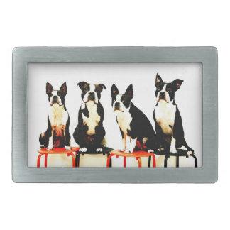 Boston terrier family Ⅱ Belt Buckle