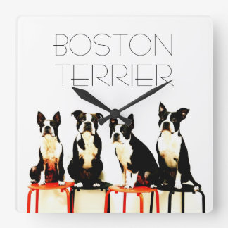 Boston terrier family Ⅱ Square Wall Clock