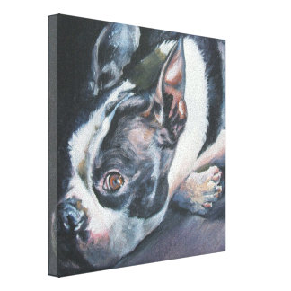 Boston Terrier Fine Art Painting on Wrapped Canvas