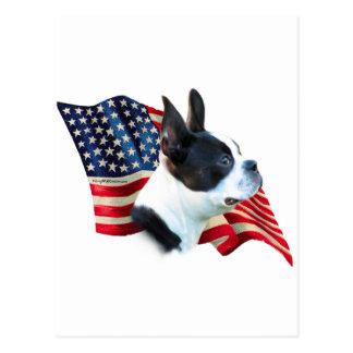 Boston Terrier Flag Postcard