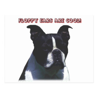 Boston Terrier:  Floppy Ears are Cool! Post Cards
