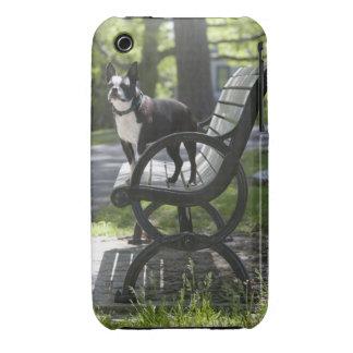 Boston Terrier iPhone 3 Case-Mate Funda