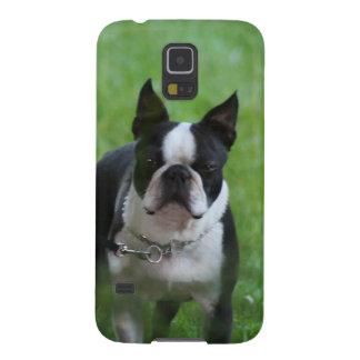 Boston Terrier Funda De Galaxy S5